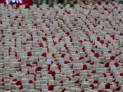 English: Memorials outside London's Westminster Abbey for Remembrance Day, 2002.