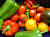 Fresh vegetables are important components of a healthy diet.
