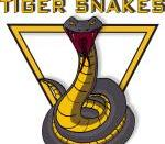 Geelong Tiger Snakes