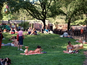 English: The central knoll at Tompkins Square Park in New York City where people sunbathe and relax.