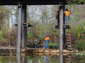 Replacing Bessies Bayou Railroad Trestle, Brookshire, Texas 1212051036