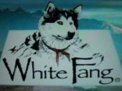 White Fang (1993 TV series)