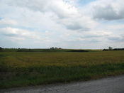 An rural area west of Route 41 and Lowell, Indiana.