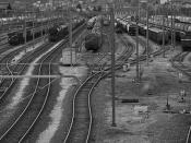 Train Speciation