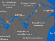 Map of conservation efforts of the baiji (Lipotes vexillifer) along the Yangtze