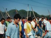Sentimiento Tordesillas 1992