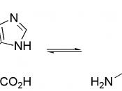 Diagram of histidine NH equilibrium.