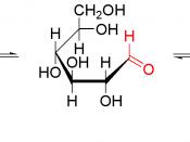 Schematic representation of the equilibrium of glucose.