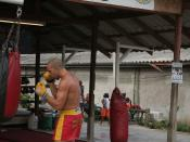 A muay thai fighter