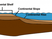 Cross-section of continental margin depicting the particular elements