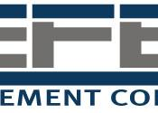 Tefen Management Consulting - company logo