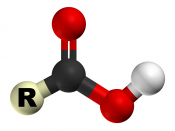 The 3D structure of the carboxyl group