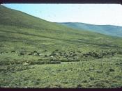Hillside in Lesotho