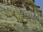English: Bulverhythe cliff face. Cliff showing evidence of corrosion, corrasion and hydraulic action. Sandstone upper layers. Clay lower layers.