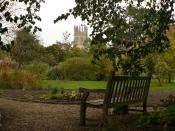 English: Oxford Botanic Garden in the snow with Magdalen Great Tower in the background. A photograph of Will's Bench from Philip Pullman's book 'The Amber Spyglass'. October 7, 2007.