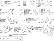 English: Total Synthesis of Sporolide B