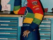 Jeff Gordon in 1998