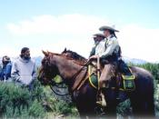 English: United States Forest Service Law Enforcement & Investigations Horse patrol.