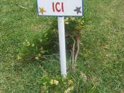 English: Public warning in creole language on Rodrigues island in Port-Mathurin(pas zet salte ici : don't throw any litter here), the plant is Psiadia retusa Français : Panneau d'avertissement en créole rodriguais à Port-Mathurin (pas zet salte ici : ne j