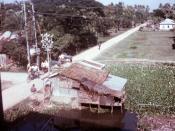 Food hut--Patuakhali Town, Bangladesh