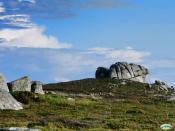 Galego: Con Negro, O Grove