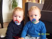 English: Identical twins Dansk: Enæggede tvillinger