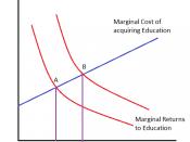 English: Human Capital Investment Model!!