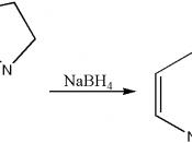 Reduktion von Iminen mit NaBH4