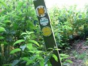 Boudica's Way - footpath markers - geograph.org.uk - 1378686
