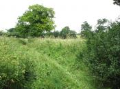 Boudica's Way past Saxlingham Nethergate - geograph.org.uk - 1384242