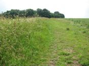 Boudica's Way south of Saxlingham Nethergate - geograph.org.uk - 1384408