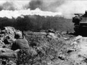 Several M4A3 Sherman tanks equipped with flamethrowers were used to clear Japanese bunkers