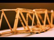 1.6.2011 <truss bridge> 356/365