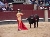 A matador in full dress in Plaza de Toros Las Ventas in Madrid