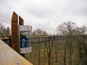 English: The Xstrata Treetop Walkway and Rhizotron, Kew Gardens, Surrey Nearly done the complete circuit, just before the final walk before descending the stairs, we have this view of the lift access, which is primarily for elderly or disabled people.
