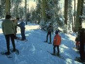 United States National Park Service photo of snowshoeing in Yosemite National Park