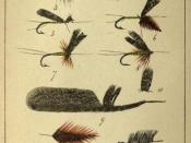 Plate VII From Rod Fishing, Henry Wade (London 1860)