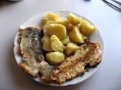 Česky: Pstruh duhový a vařené brambory