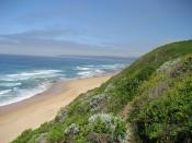 Der Strand in Wilderness