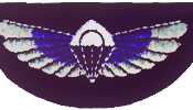 UK Special Air Service Wings