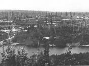 Bellevue seen from Meydenbauer Bay in 1902