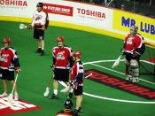 A Calgary Roughnecks lacrosse game at Pengrowth Saddledome.