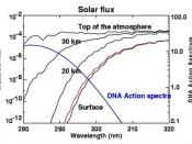 UV-B energy levels at several altitudes. Blue line shows DNA sensitivity. Red line shows surface energy level with 10% decrease in ozone
