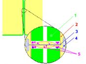 Structure of plasmodesma 1 - Cell wall 2 - Plasmalemma 3 - Desmotubule 4 - Endoplasmic reticulum 5 - Proteins