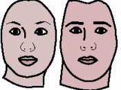 English: This is a reproduction of two variants of one woman's face -- one masculinized and one feminized. The two computer-created morphs were done by Face Research, a psychological organization that studies human faces. http://www.sciencenewsforkids.org