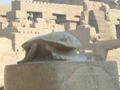 English: A Dung beetle at Karnak