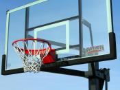 Mammoth Basketball hoop, basketball, Lifetime Products