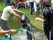 English: Baptism of freshmen in portuguese praxe.