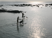 English: Paddling surfboards in Kona