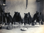 Four young Hopi Indian women grinding grain